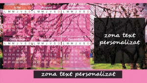 calendar roz zona personalizare