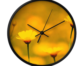 ceas de perete flori 2015