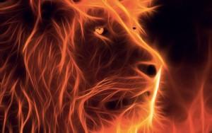 lion_fractal_de_feu personalizari cu personalitate 500