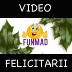 Felicitari video